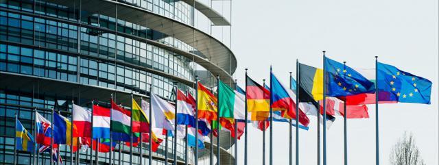elezioni-europee-2014-25-maggio-exit-poll